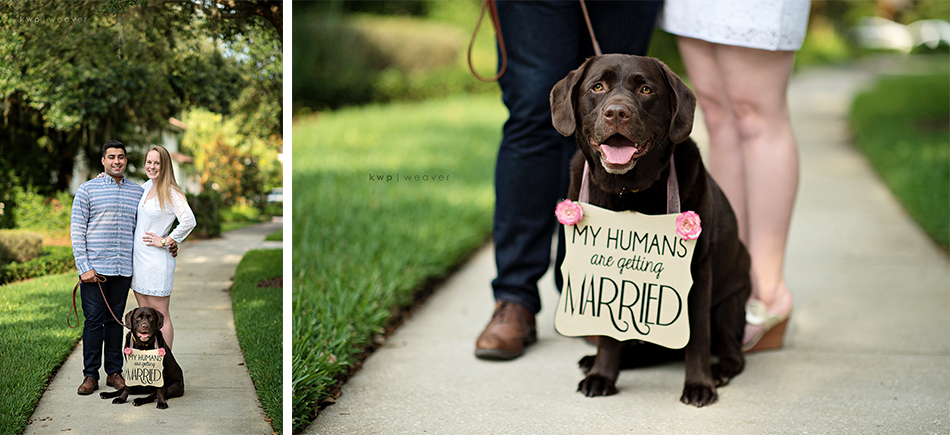 baldwin park engagement with dog