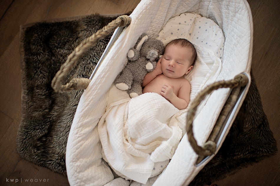 posed newborn photo