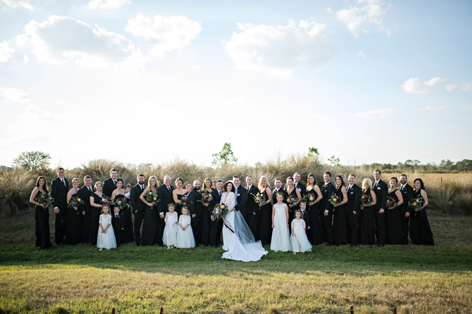 large wedding party formal portraits