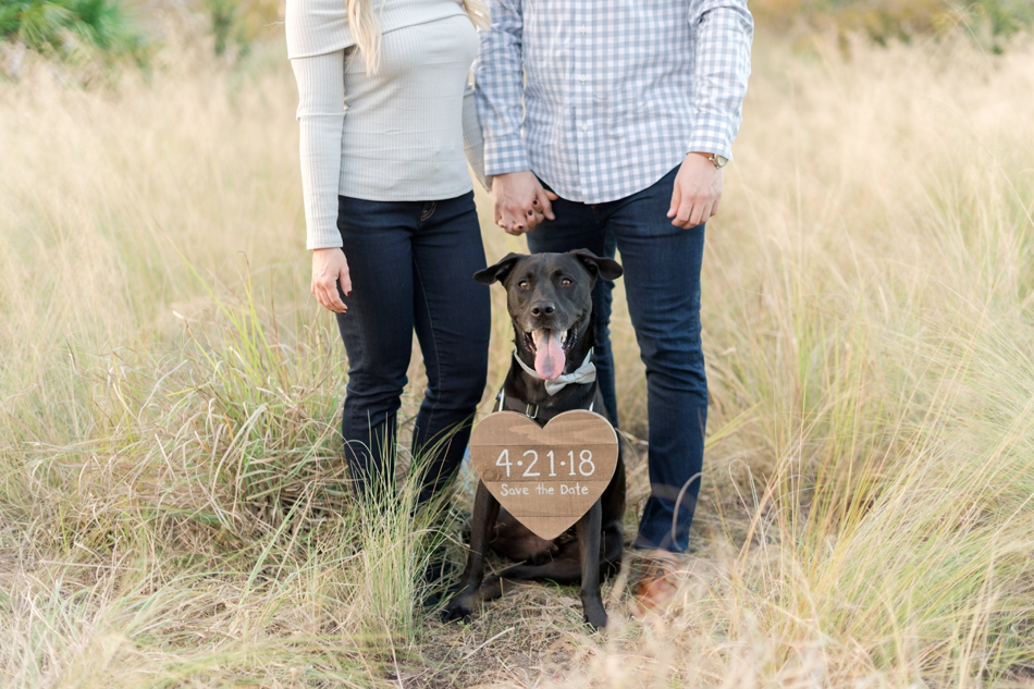 save the date photo ideas with dog