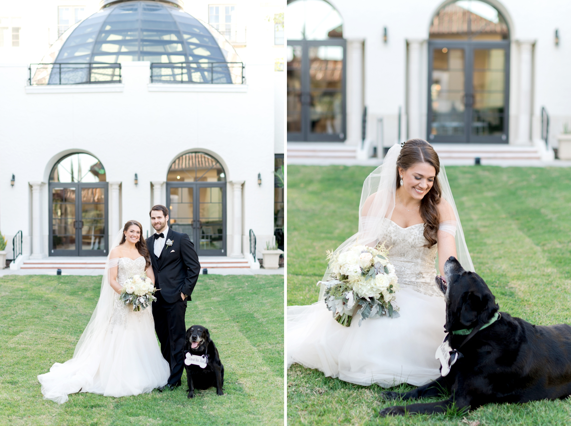 pet friendly wedding