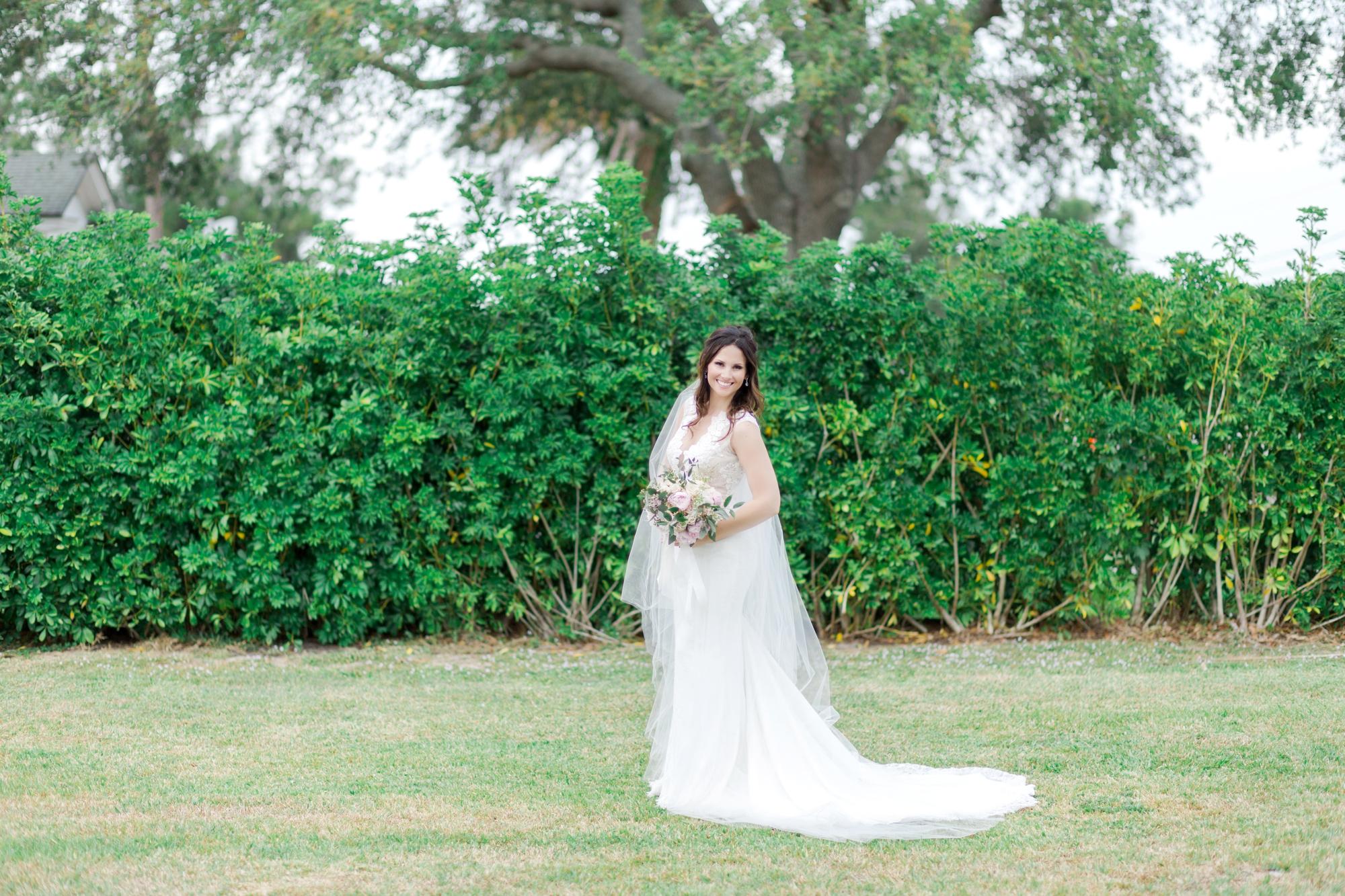 long veil and wedding dress