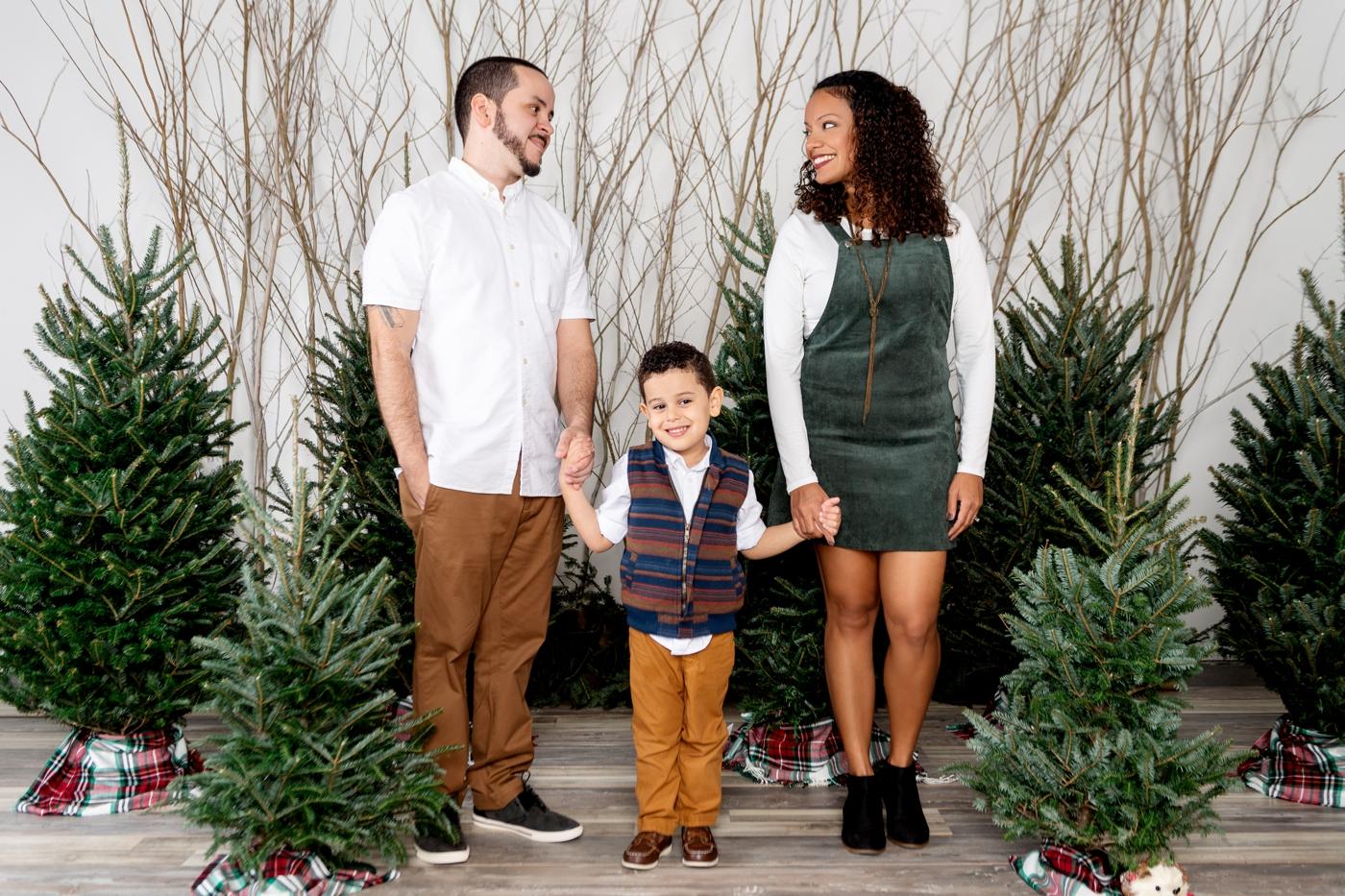 orlando christmas minis