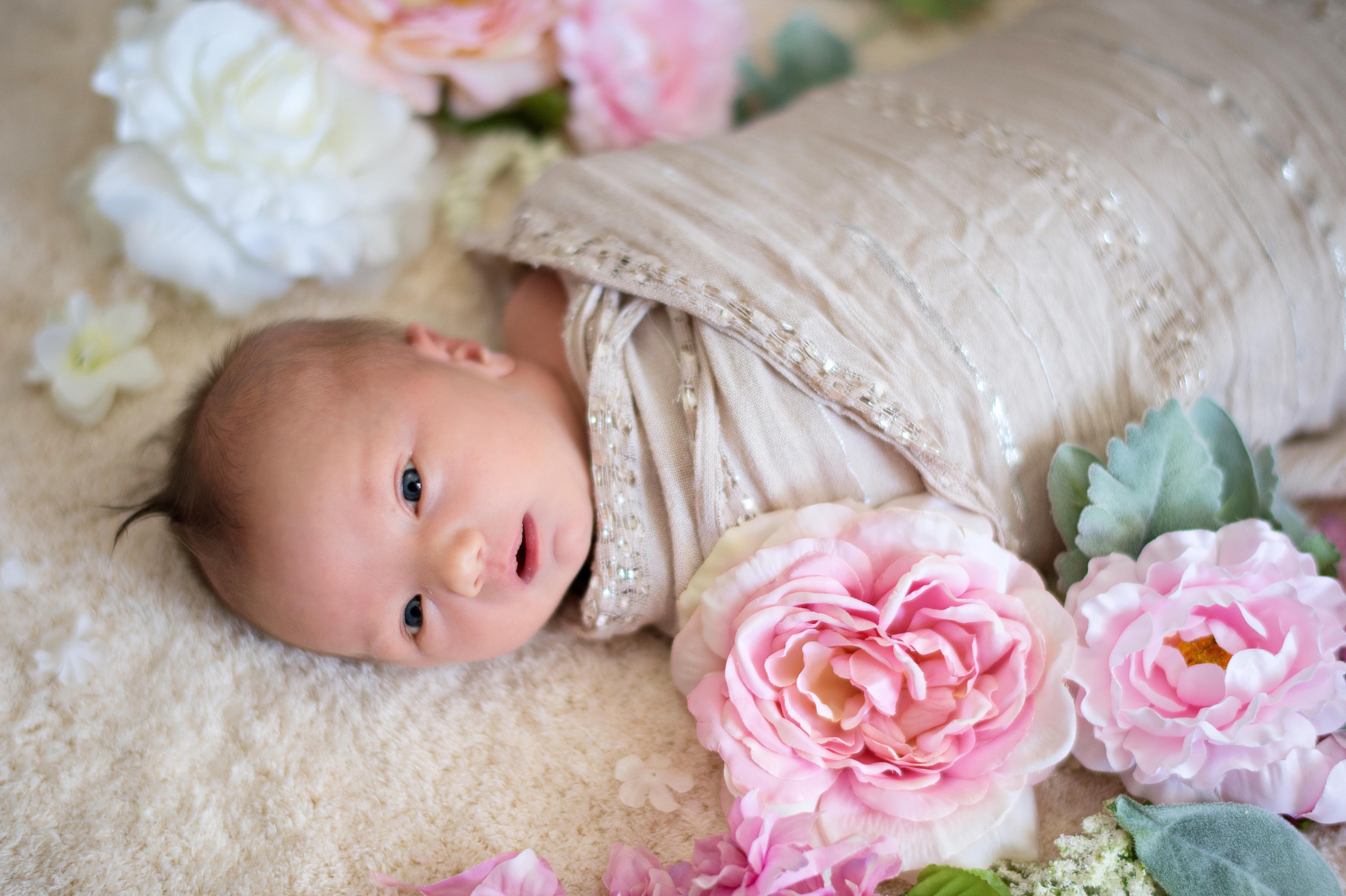 oviedo newborn session