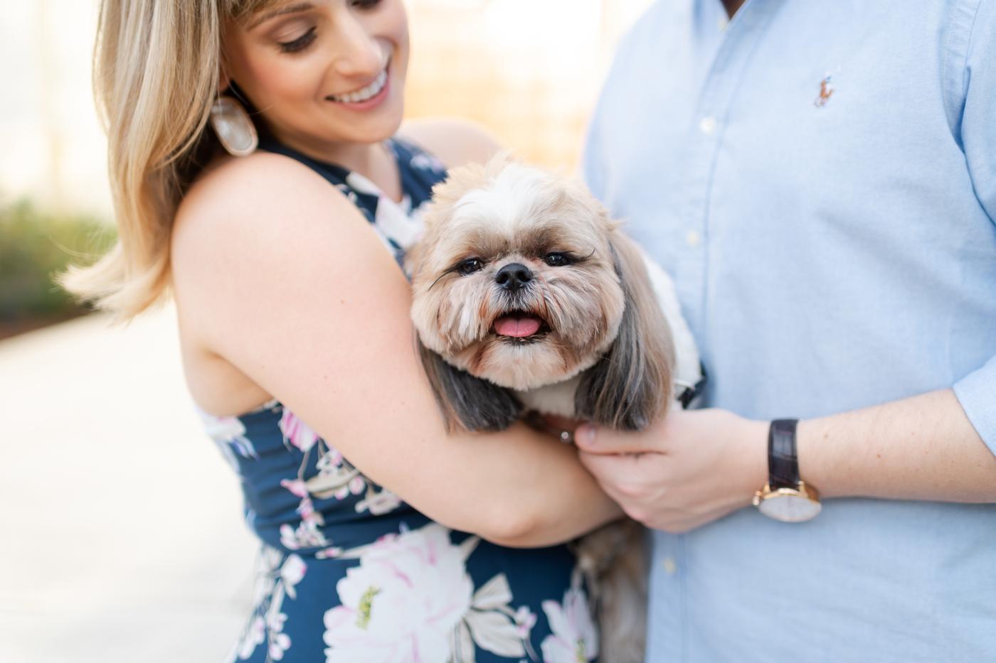 orlando engagement with dog