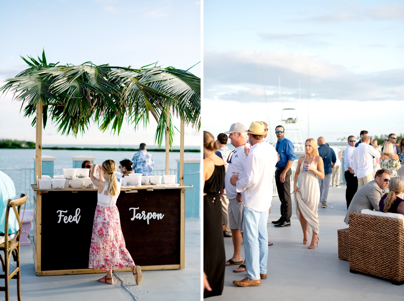 feed the tarpon wedding