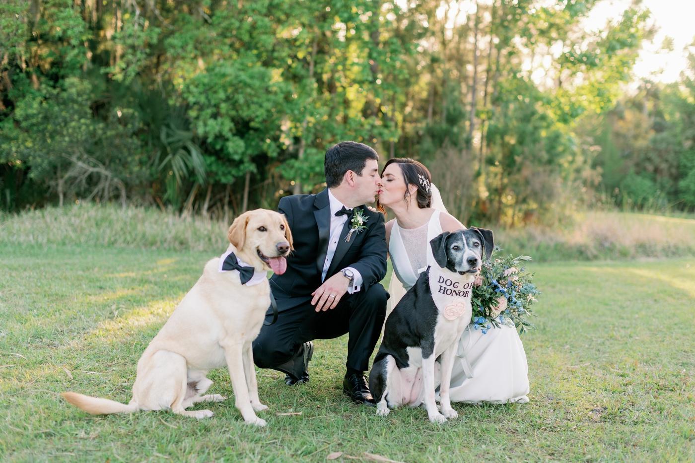 wedding portraits photography
