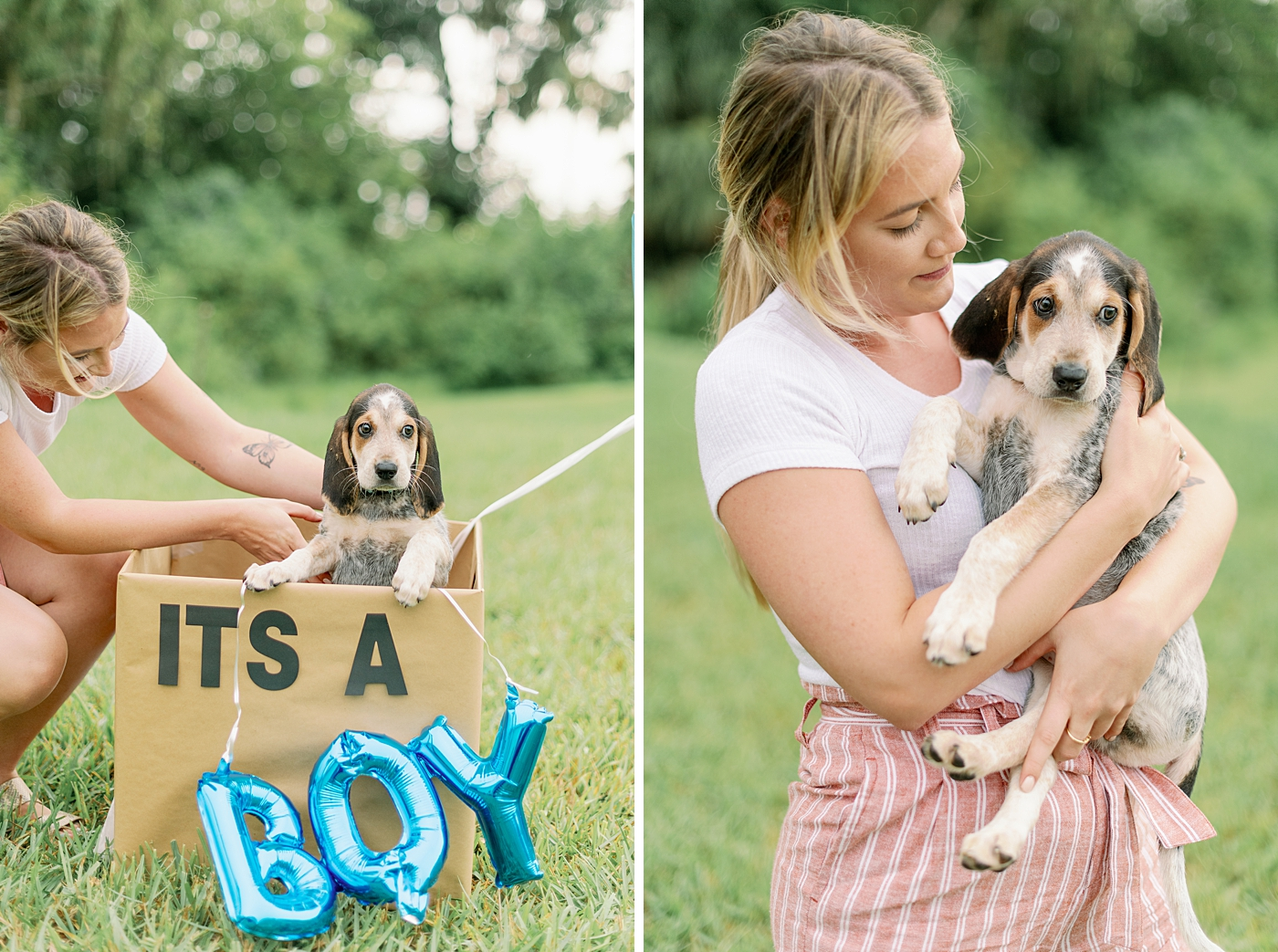 its a boy puppy photography